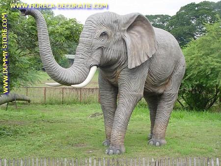 Olifant, lengte: 3,70, hoogte: 3,10 mtr