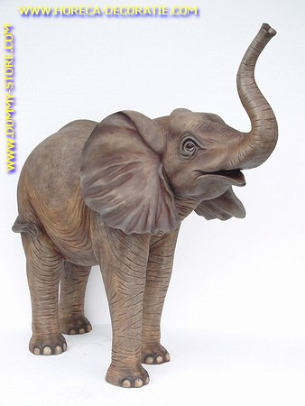 Baby Elefant stehend, lengte: 1,60, Höhe:1,60 mtr