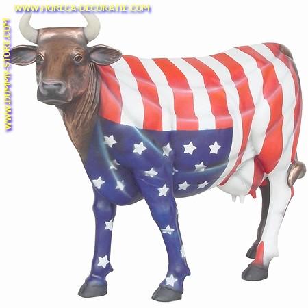 Amerikaanse koe, levensgroot