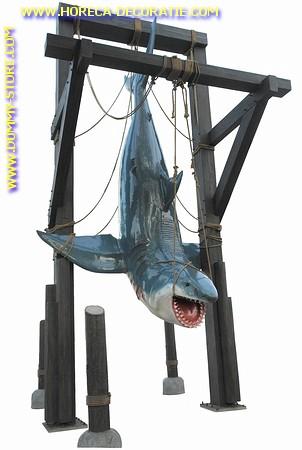 Haai (hangend), 6,3 meter
