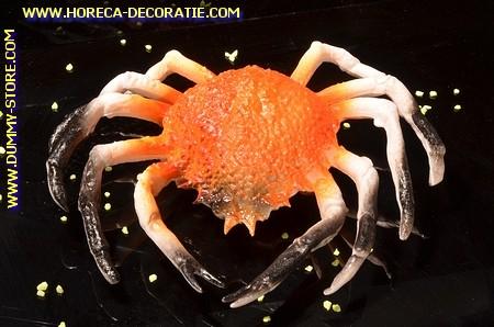 Krabbe, (C1)