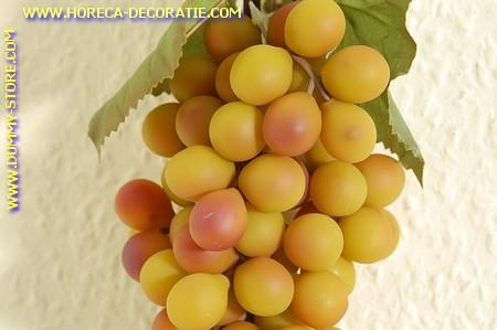 Druiven, tros WIT