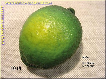 Limoen - dummy