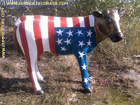 Kalf, groot, Amerikaanse vlag