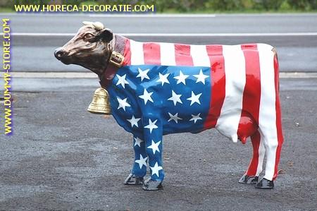 Koe met bel, Amerikaanse vlag