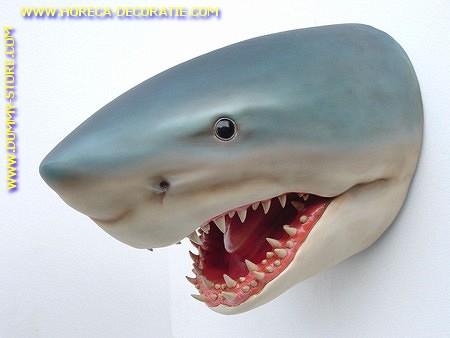 Shark (head) 0,85 meter