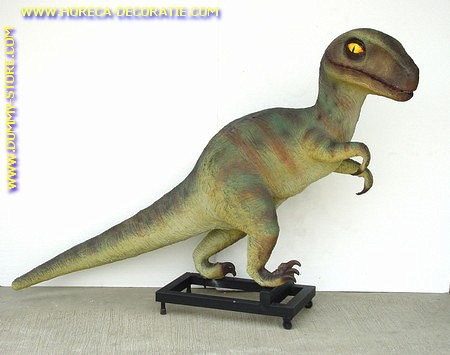 Baby T-Rex, H:1,43, B;1,88, L:0,52 mtr