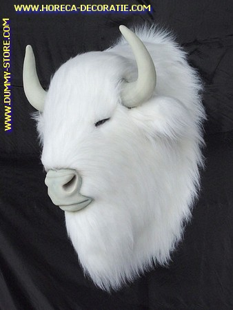 Buffalo Albino (head), 0,82 meter