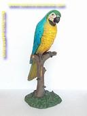Papagaai, hoogte 1,06 meter