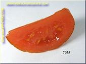 Tomato 1/8 part