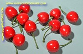 Cherry dummy,10 pcs RED