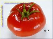 Tomate Attrappe