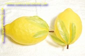 Lemon, GIGANT, 1 pcs. - dummy