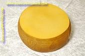 Padano, Italiaanse kaas, heel - 440x210 mm - Kaas dummy