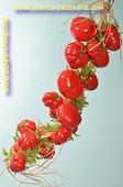 Tomaten, 20 Stück am Strang - Attrappe