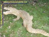 Krokodil, L: 1,80 mtr, B: 60 mtr.