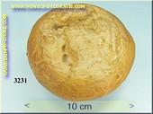 Brot - Attrappe