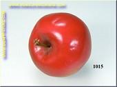 Rode Appel - namaak