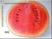 Watermelone, halbe