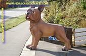Hond, Megagroot XXXL