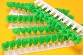 Salat Dekorationsgrün, WEISS, 5 stück