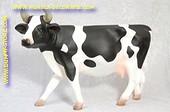 Koe, Lengte: 0,78, Hoogte: 0,48 meter
