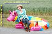 Koeien bank, Levensgroot in kleuren