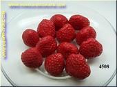 Aardbeien zonder spin, 12 stuks