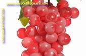 Druiven, tros, ROOD