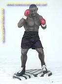 Boxer, Höhe: 0.99 Meter